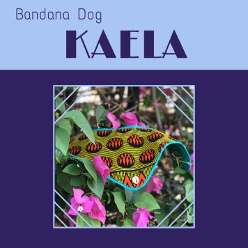 BandanaKaela